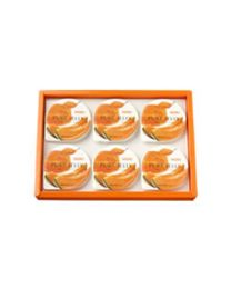 HORI Jelly Yubari melon pure jelly 6 pcs Made in HOKKAIDO Free Shipping New Box
