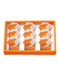 HORI Jelly Yubari melon pure jelly 9 pieces Made in HOKKAIDO Free Shipping New Box