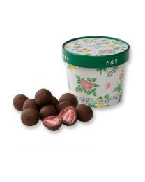 ROKKATEI Chocolate Strawberry Chocolate Milk Box (100 g) Made in HOKKAIDO Free Shipping New Box